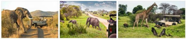 Types of Travel in Africa