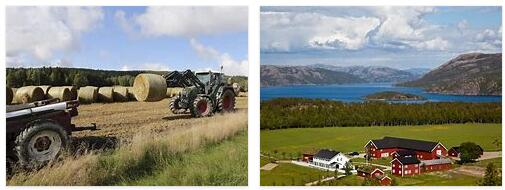 Agriculture in Norway 2
